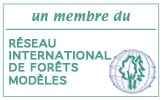 International Model Forest Network