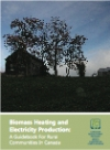 Biomass Heating & Electricity Production: A Guide for Rural Communities in Canada